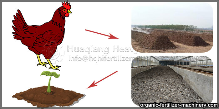 chicken manure processed by equipment on soil