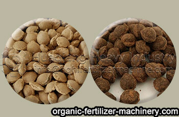 granules of double roller press granulator