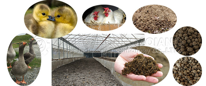 Poultry farming manure and organic fertilizer production